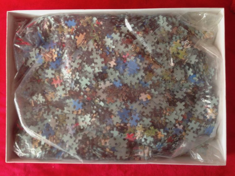 Image of the puzzle 3000, Diset, Lotschental, Complete, Picture of the bag