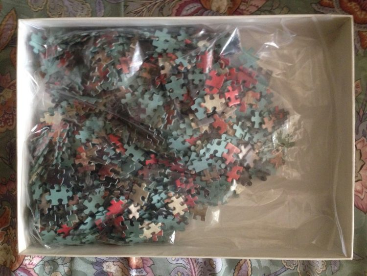 Image of the puzzle 1000, Nathan, Family with Dahlias, by Albert Herter, Complete, Picture of the bag