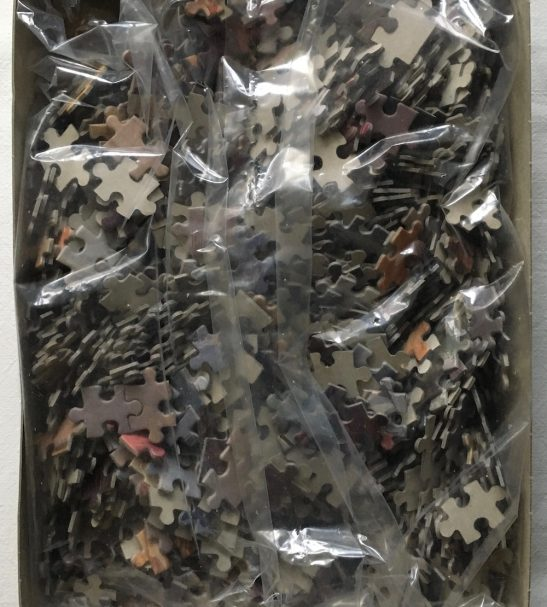 Image of the Puzzle 1500, PTZ AG, Sea of Love, by James Griffin, Sealed Bag, Picture of the Bag