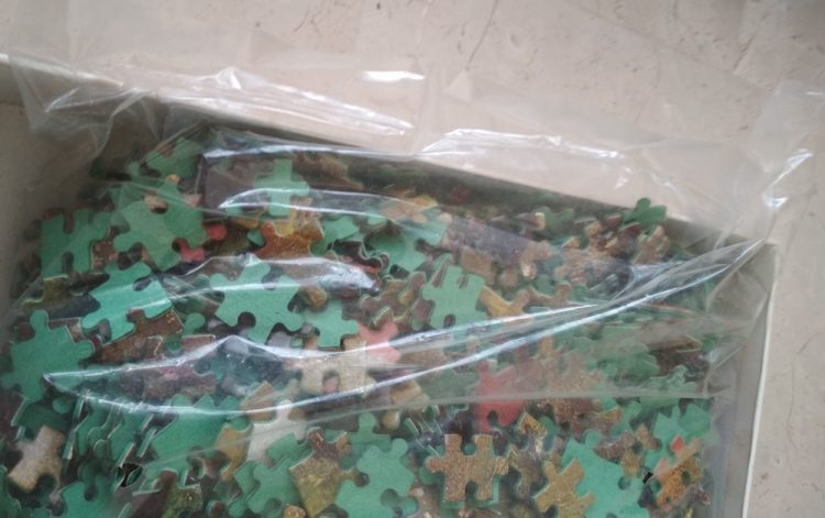 Image of the puzzle 3000, Educa, The Washerwomen, by Joaquim Vayreda, Sealed Bag, Picture of the bag