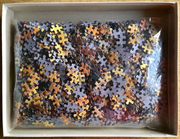 Image of the puzzle 1500, MB, Venice, Chayan Khoi, Complete, Picture of the bag