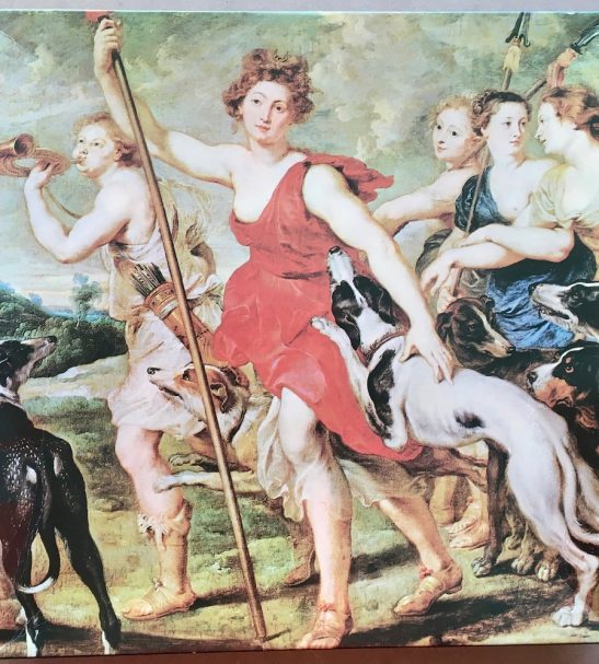Image of the puzzle 450, Waddington, Diana Hunting, by Peter Paul Rubens, Picture of the box