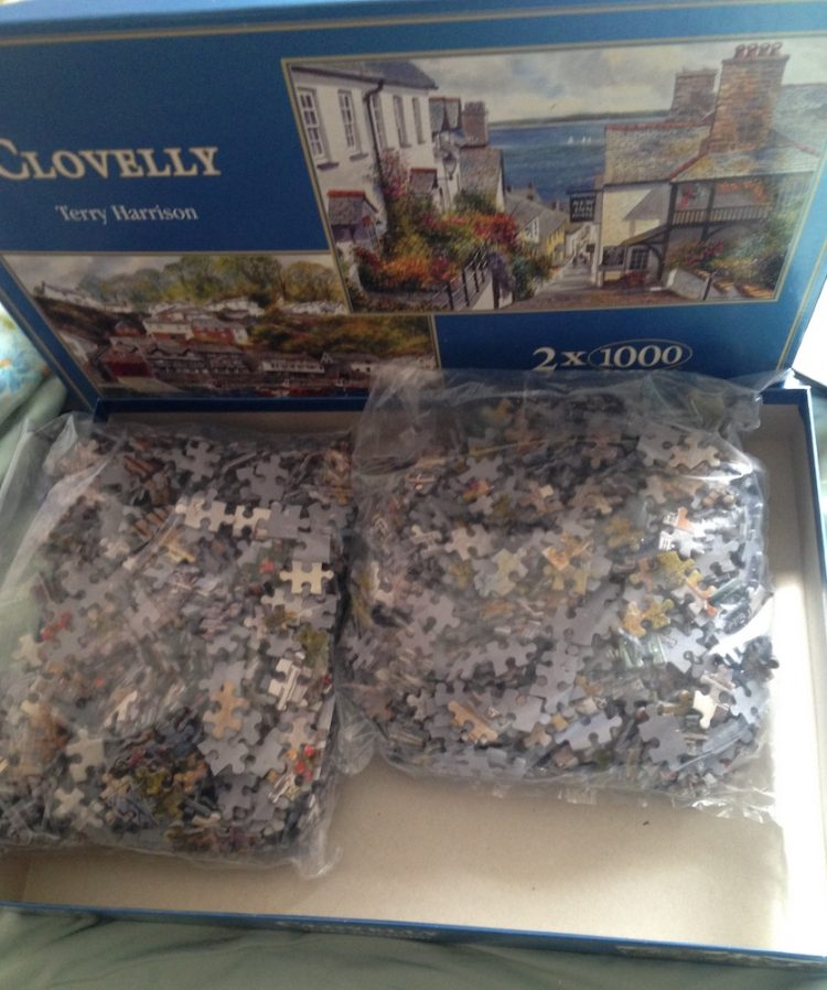 Image of the puzzle 2x1000, Gibsons, Clovelly, by Terry Harrison, Sealed Bags, Picture of the bags