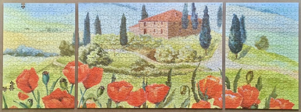 Image of the puzzle 2x500, 1000, Spiel Spass, Lawn with Poppies, Puzzle Assembled, Blog Post