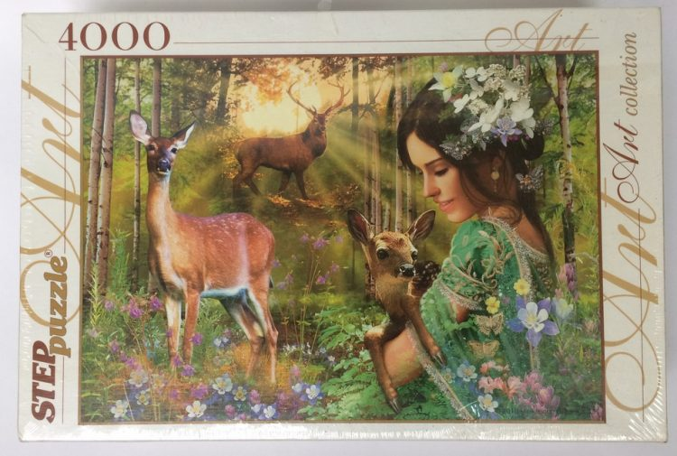 Image of the puzzle 4000, Step, Magic Valley, Unknown Artist, Picture of the box