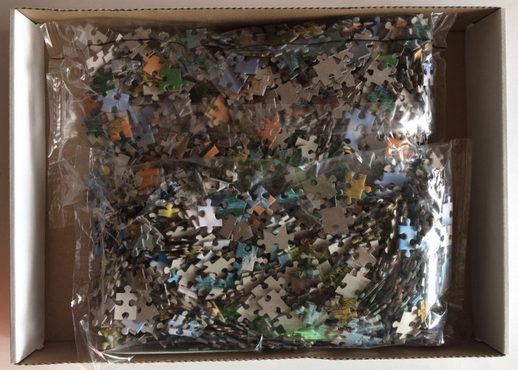Image of the puzzle 2000, Castorland, Private Wave, by Jacek Yerka, Sealed Bag, Picture of the bag