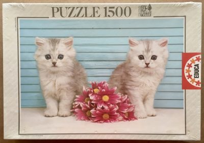 Image of the puzzle 1500, Educa, The Present, Factory Sealed