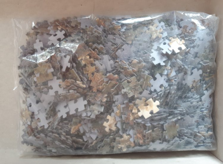 Image of the puzzle 1000, Step, Morning in a Pine Forest, by Shishkin & Savitsky, Sealed Bag, Picture of the bag